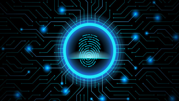 Small Business Cyber Security Consulting